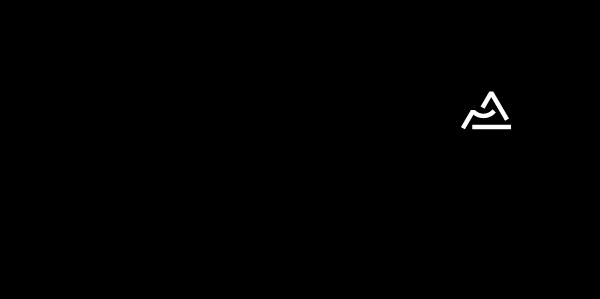 logo partenaire region auvergne rhone alpes rvb noir